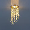 2373c4e09a79b7715474e6e1a8918c1a 100x100 - встр. точечный светильник Elektrostandard 205C C золото/прозр.