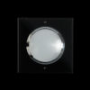 6d87f234f6e17830f4f189f94f07c695 100x100 - Настенно-потолочный светильник Italux MQ101820-2B