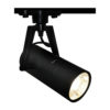 7d807f086d16a3b5ca95b0f6a4b6bcc9 100x100 - Трековый светильник ArteLamp A6210PL-1BK