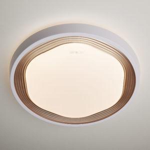 b13026a6c9db88317cb067da801b0ebd 300x300 - Настенно-потолочный светильник Eurosvet 40005/1 LED кофе