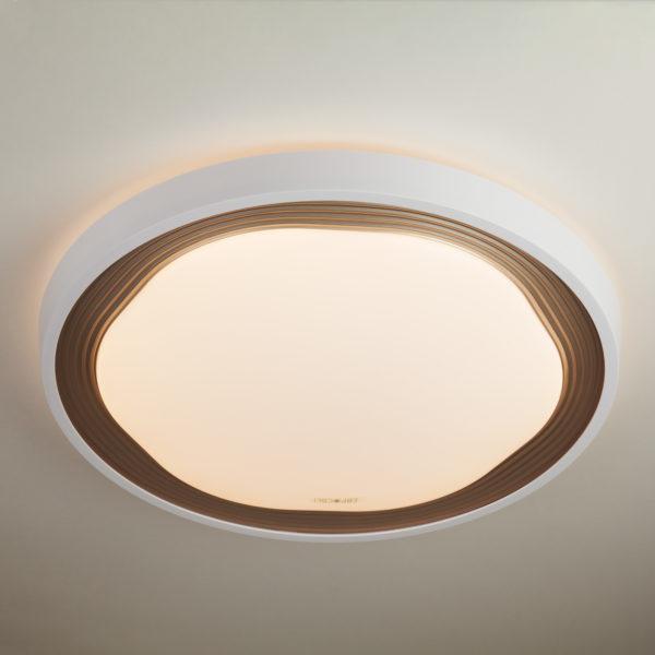 c1bf0e6e5e84a1352bdb9fd89ce0cc6a 600x600 - Настенно-потолочный светильник Eurosvet 40006/1 LED кофе