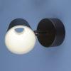 ecce901b249b8ff90a35dae7562b8b7c 100x100 - Настенно-потолочный светильник Elektrostandard DLR025 5W 4200K черный мат.