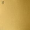 fb26b0a8d10233f6b35e6573381cda0c 100x100 - Настенно-потолочный светильник Lustrarte 689/38-0622 мат. латунь/мат. стекло