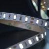e71fd0b74d9910d4ca1a904a290e3439 100x100 - Лента светодиодная стандарт 5630, 60 LED/м, 12 Вт/м, 12В , IP20, Цвет: хол. белый